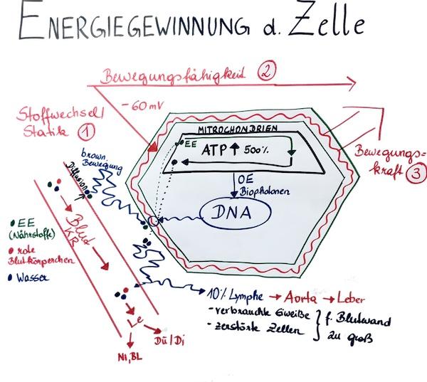 Energiegewinnung